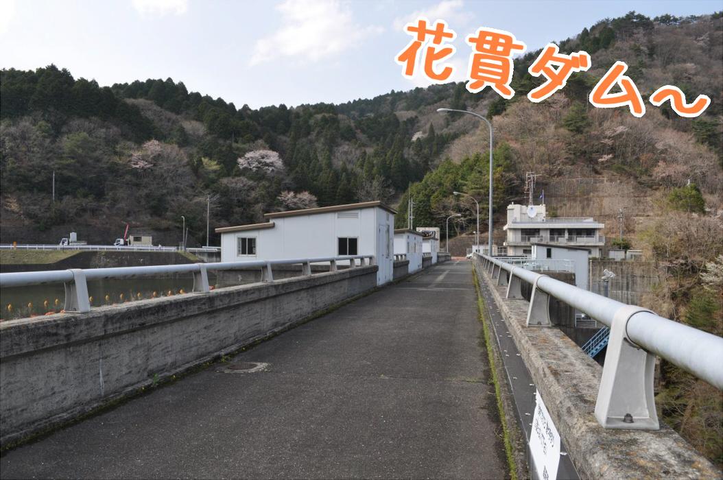 DSC_0134_.jpg
