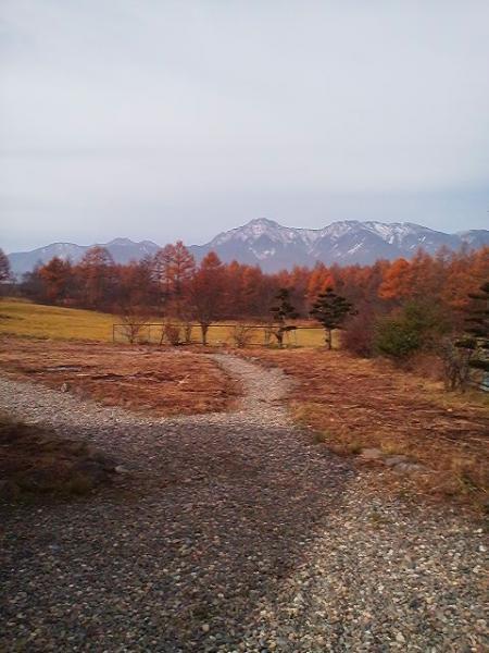八ヶ岳・初冬_convert_20101114231904
