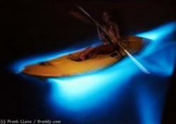 kayak2[1]