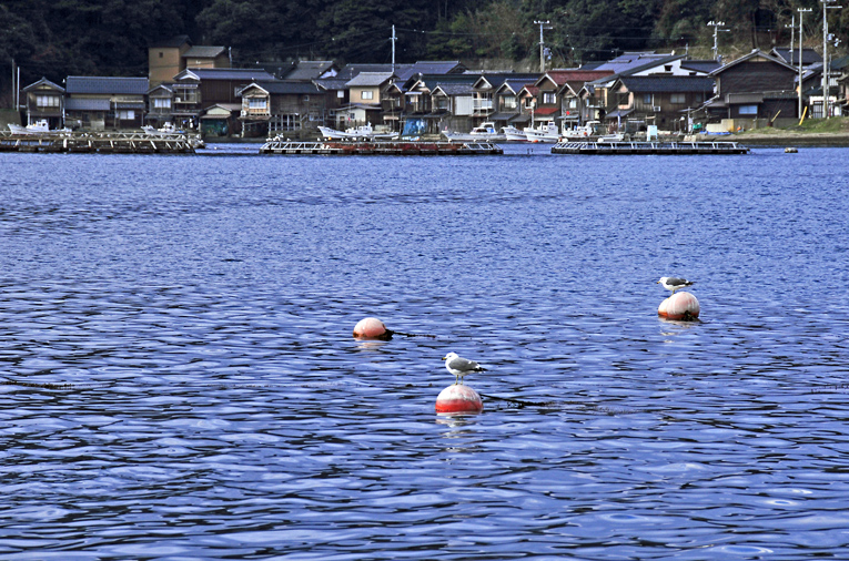 伊根の海03