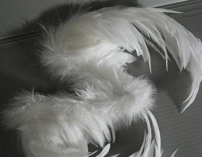 dc2011-tori 013