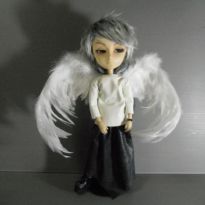 dc2011-tori 005