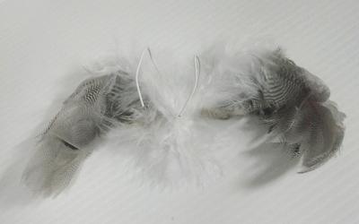 kubi-hane01 027