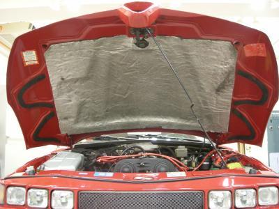 RZ Bonnet Inner 1