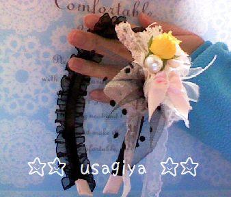 Snapshot_20110308.jpg