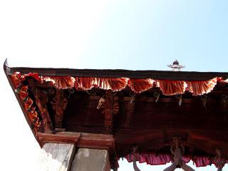 NEPAL_095_blog.jpg