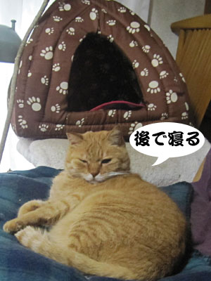 14_01_06_1.jpg