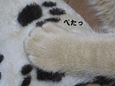 14_01_08_5.jpg