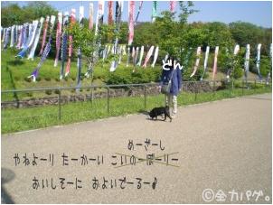 zenryoku-4_20100502153857.png