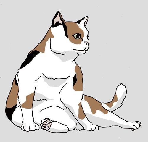 猫イラスト3