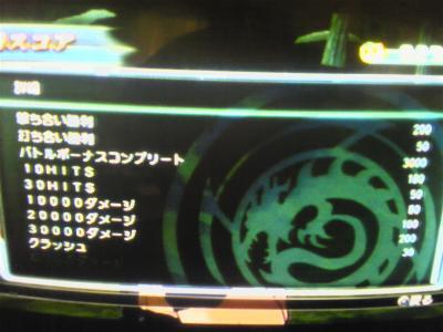 DVC00026_convert_20100325164836.jpg