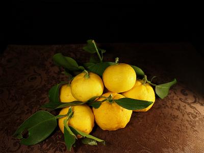 柚子1312