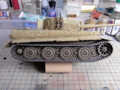 tiger1_late_vr_22.jpg