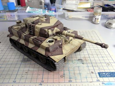 tiger1_late_vr_35.jpg