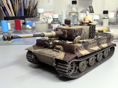 tiger1_late_vr_40.jpg