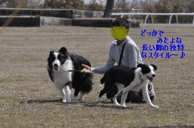 2011-04-10+002_convert_20110412115731_20110412174745.jpg