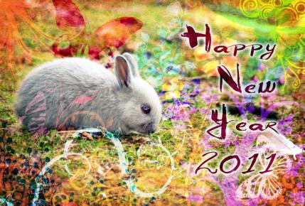HappyNewYear2011zsf.jpg