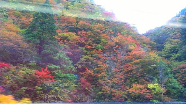 2014-10-19_10-18-10.jpg