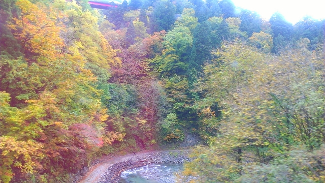 2014-10-19_10-18-51.jpg