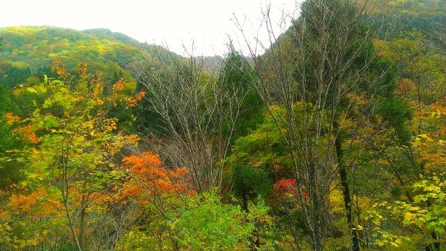 2014-10-19_10-20-04.jpg