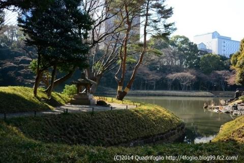 2014年 小石川後楽園