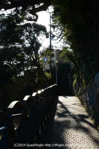 2014冬の江の島・鎌倉