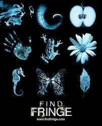 アメドラ記録(その6) 『FRINGE/フリンジ』 (2008~2013/アメリカ)