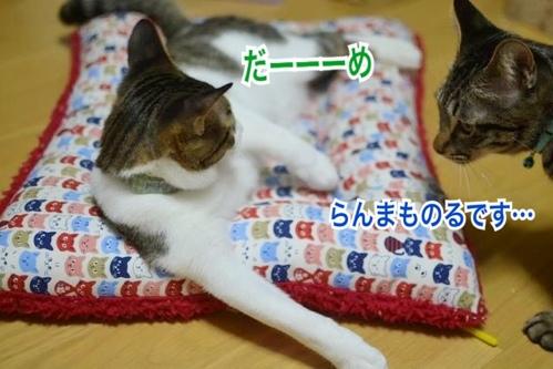 fc2blog_20131130024934451.jpg