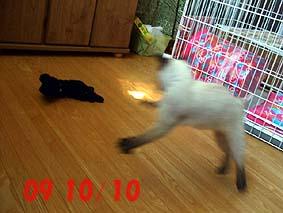 2009-10-10---1.jpg