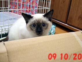 2009-10-20---1.jpg