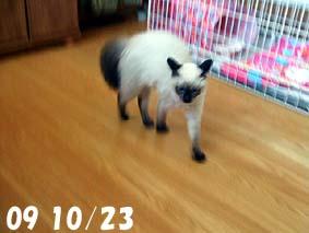 2009-10-23---2.jpg