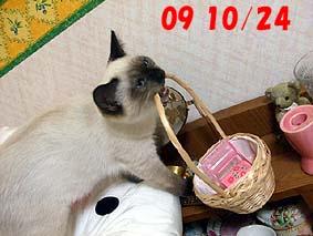 2009-10-24---2.jpg