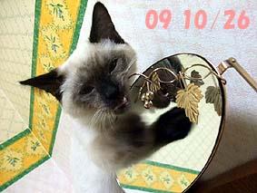 2009-10-26---1.jpg
