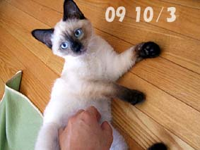 2009-10-3---1.jpg