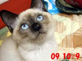 2009-10-9---1.jpg