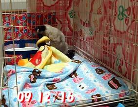 2009-12-16---1.jpg