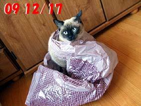 2009-12-17---2.jpg