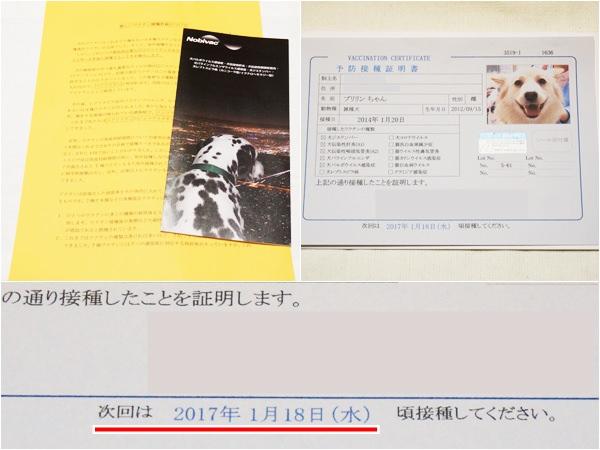 20140124_7.jpg