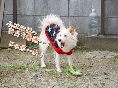 20140127_9.jpg