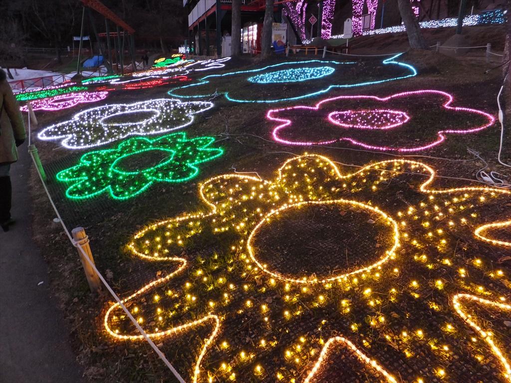 光の花絨毯_1