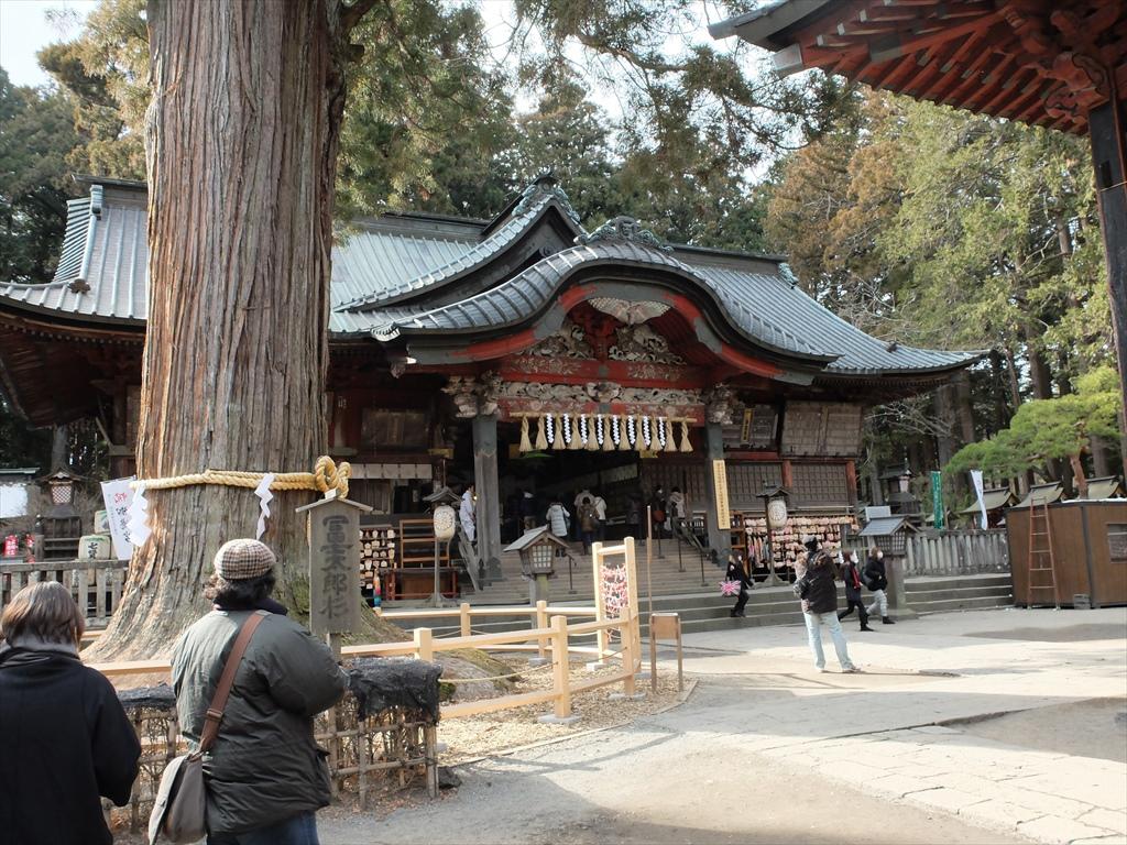 太郎杉から拝殿を望む