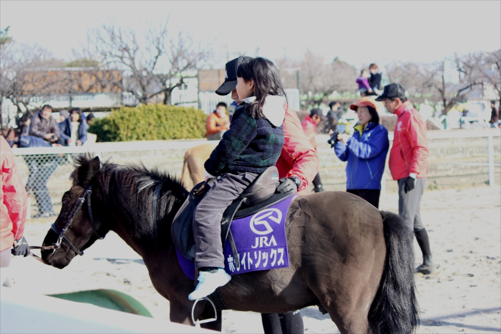 ポニーの体験乗馬_1