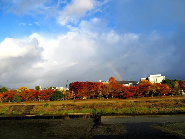 s10-niji9792x.jpg