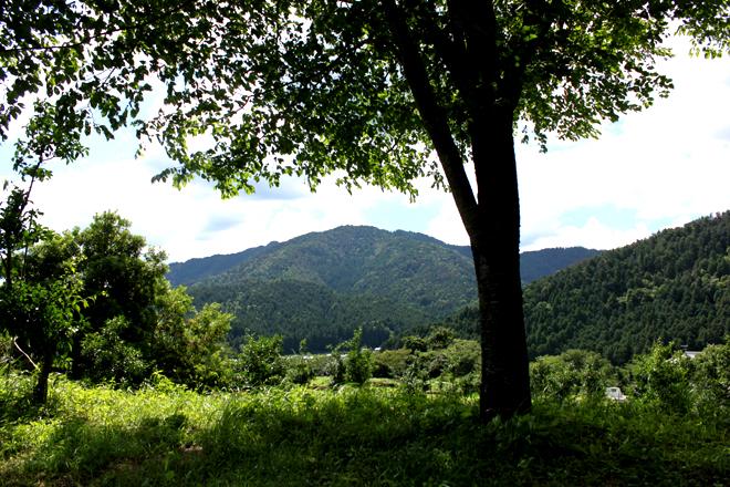 s10-oohara0366.jpg