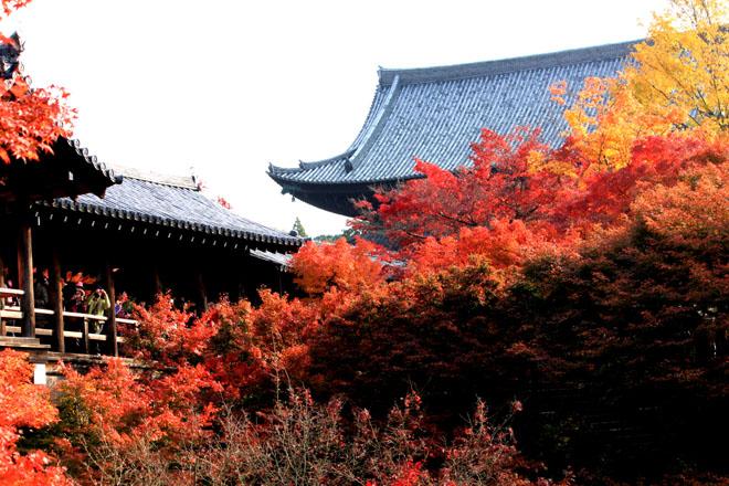 tofukuji-s10-0352xg.jpg