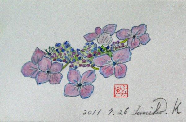 IMGP4sui387-1.jpg