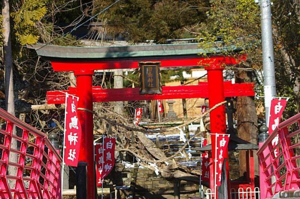 IMGP9kinou-957.jpg