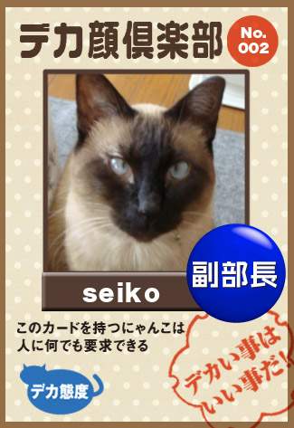 seiko_20100423235243.jpg