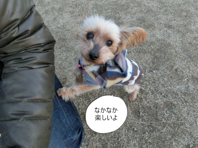 2014,1,26 瀬戸内海・牛窓の旅 147
