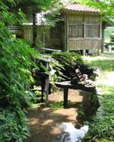 photo8山口